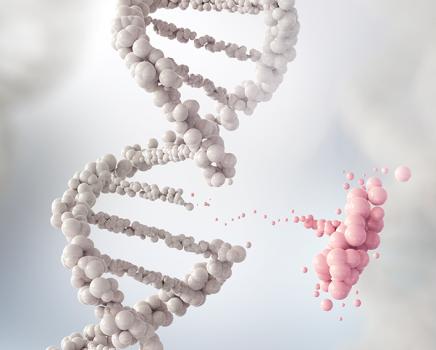 Genética pode driblar os desafios climáticos