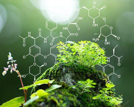 Biotecnologia é a chave da virada energética