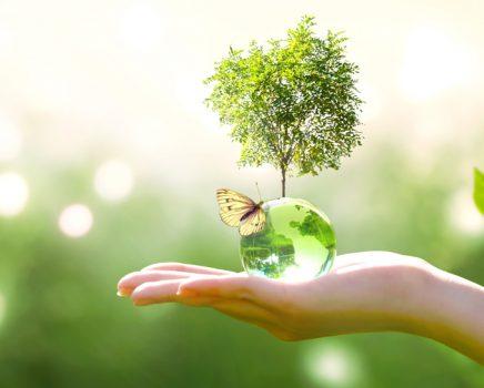 A transição energética é um compromisso de todos